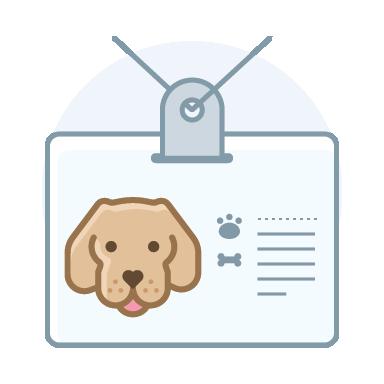 Modificaciones de conductas en perros